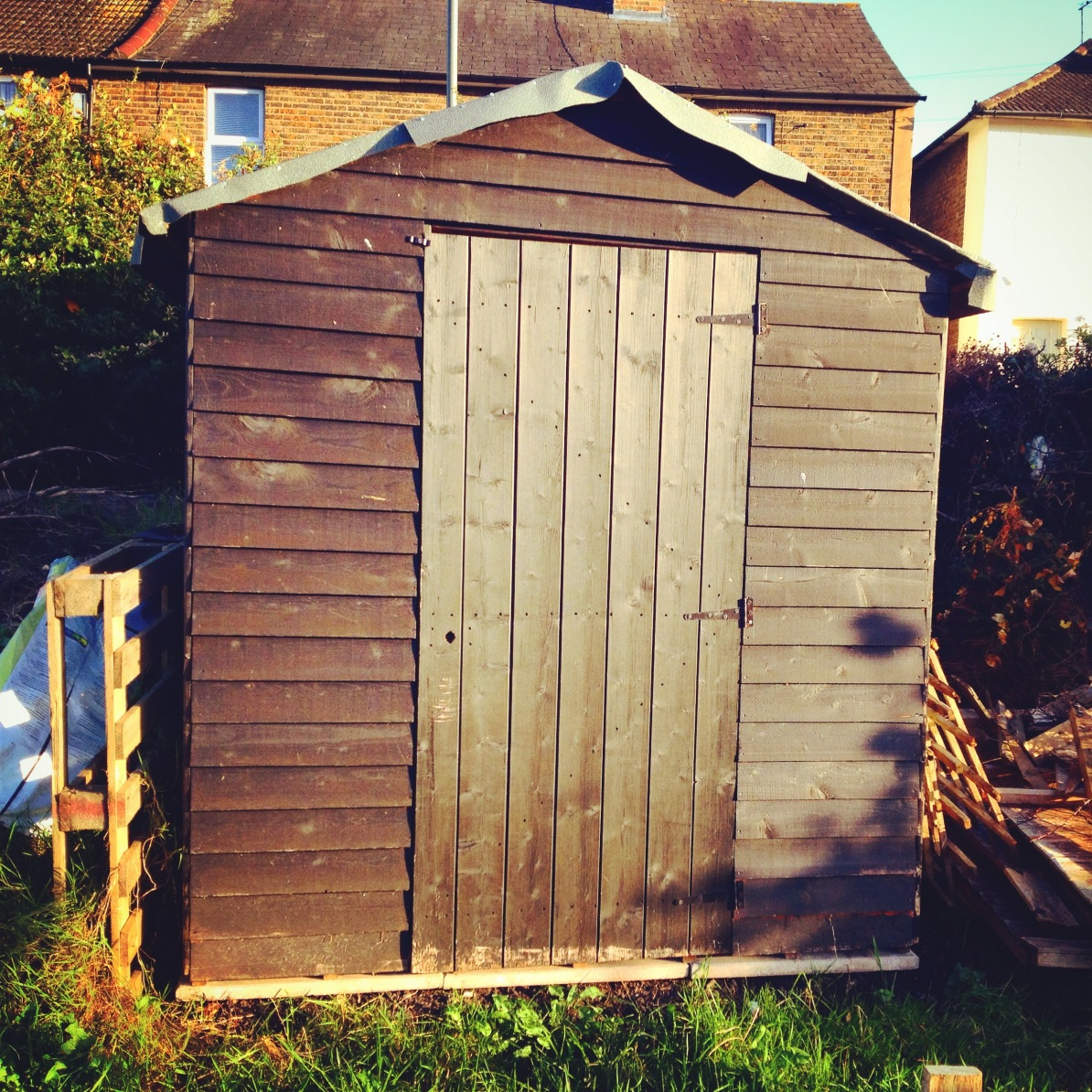 My new shed (Picture: Amy Willis)